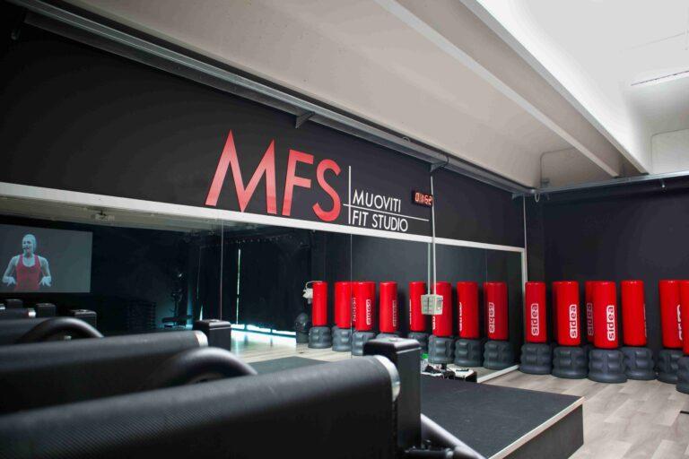 MFS 16-compressed