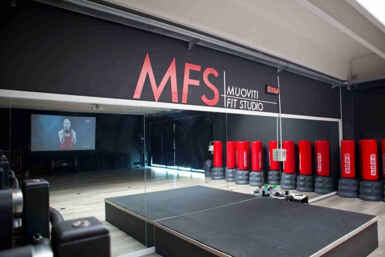 MFS 17-compressed