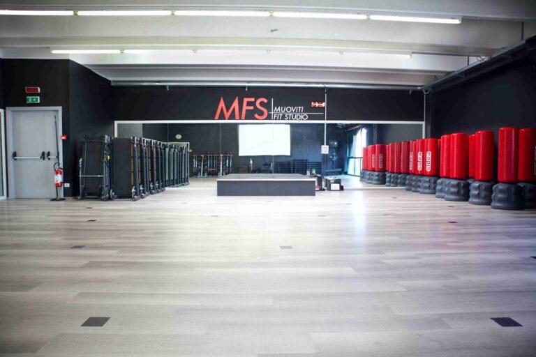 MFS 5-compressed